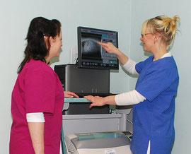 Digitales Röntgen - Tierarztpraxis Rafael