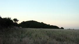 Tumulus de Tumiac