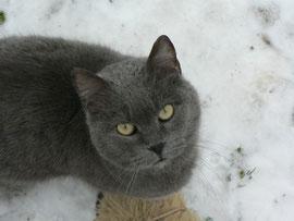 Cassius, 5 ans
