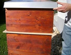 Bei Beutensystemen mit gleichem Rähmchenmaß für Brut- und Honigzarge ist der variable Einsatz von zusätzlichen Zargen ohne großen Materialeinsatz möglich. Auf dem Bild ist zwischen den Zargen eine Bienenflucht eingelegt.