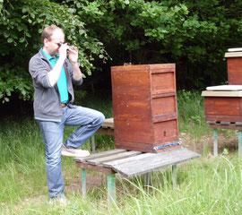Für die Ernte kommen nur verdeckelte Honigwaben in Betracht, da diese in der Regel einen niedrigen Wassergehalt aufweisen. Ein Refraktrometer schafft hierbei Sicherheit.