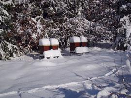 """Eingeschneite Fluglöcher sind kein Problem für das Bienenvolk. Der teilweise offene Gitterboden sorgt für die notwendige """"Belüftung"""" von unten."""