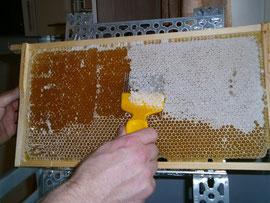 Die Honigwaben werden vor der Schleuderung entdeckelt. Das Entdeckelungswachs wird in einer Wanne aufgefangen und kann später eingeschmolzen werden.