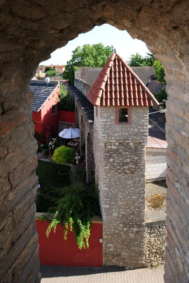 Fleckenmauer - Blick vom Obertorturm