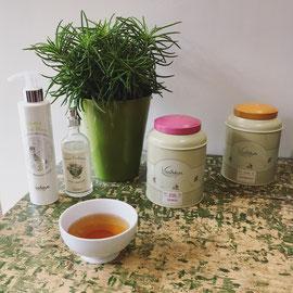 ©Astheya, invitation au voyage par le thé
