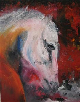 Lumière sur cheval blanc