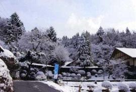 雪の降った次の日の天王川(2010年2月)