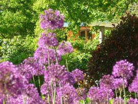 jardin fleuri à la ferme des Ânes de Vassivière