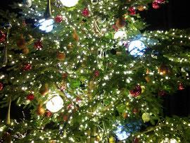 Christmas Tree クリスマスツリー