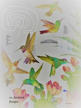 mit gedichten in die freiheit fliegen : Ilse Seifried