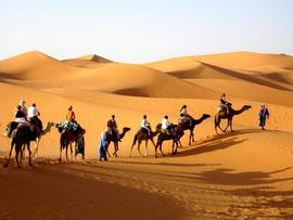 Cameltrek en las Dunas de Merzouga. www.solomarruecos.com