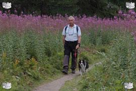 ec chiens montre qu'il est important de marcher avec son chien et de promener son chien. il faut savoir combien de temps promener son chien et faire faire de l'exercie a son chien, combien de temps promener un chiot. Tout savoir sur les balades chien