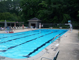 Falconbridge Pool