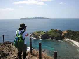 南崎小富士の頂上にてクジラを観察中