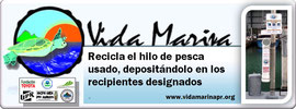 vida, marina, volunteer, environmental
