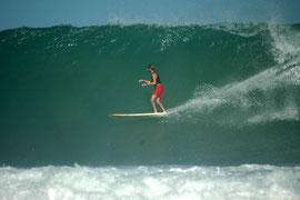 Wilderness, beach, aguadilla, surfing