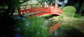 Le Pont rouge, jardin japonais contemporain, Albert  Kahn, 2009