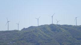 【今日は100%稼働の発電用風車群】