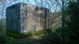 Tomba romana alla selva di Malano