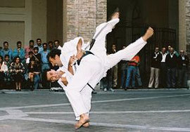 Part of a Yoshitaka demonstration. Disarming and throwing  a armed assailant
