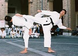 Double 'Ushiro Maewashi'