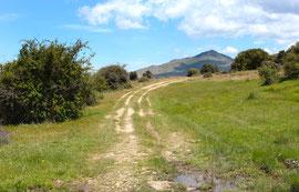 Cañadas Reales