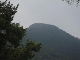 Il Monte Torriggia m. 1703
