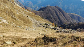 L'Alpe di Caneto m. 1765