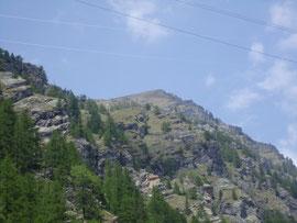 Il Seehorn m. 2438