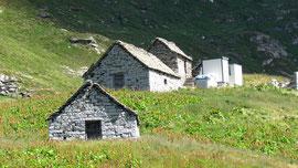 L'Alpe Poiala m. 2148