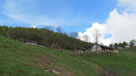 Alpe Sacchi m. 1230