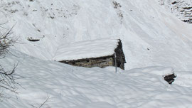 l'Alpe Tanzonìa m. 1912