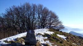 La vetta del Monte Faiè m. 1352