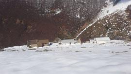 Alpe Torriggia