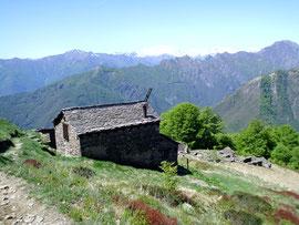Alpe Curgei m. 1350