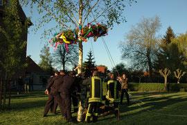 """Kameraden der Feuerwehr stellten den Maibaum auf. """"Das soll wieder zur Tradition werden"""", versprach Wehrleiter Michael Nix."""