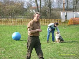 Treibball-Seminar mit Jan Nijboer