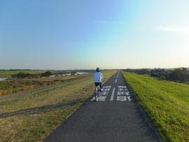 さいたま サイクリング