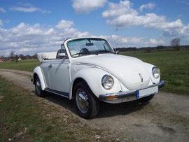 VW Käfer Cabrio mieten