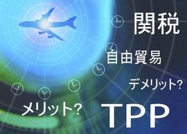 環太平洋経済連携協定