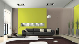 Quelle peinture est conseill e pour peindre au bout for Quelle couleur de peinture pour la maison