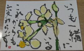 48 房咲き水仙
