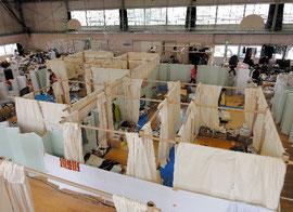 実際に設置された紙管を使った間仕切り=宇都宮市・姿川生涯学習センター付属体育館、坂茂建築設計提供