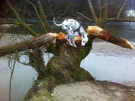 Energie zum Bäume Ausreissen