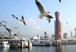 神戸市中央区の急配