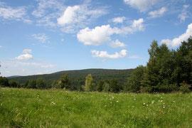 Magura Wątkowska widziana ze szlaku od strony Bartnego