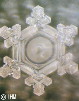 Wasserkristallbild mit der Information DANKE