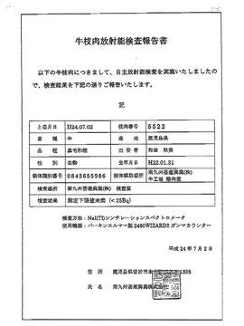 放射能自主検査報告書
