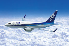 ANA All Nippon Airways Flugzeug