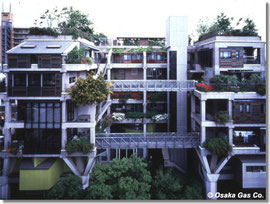 構造躯体以外の全てを交換可能にした実験住宅  大阪ガスのNEXT21